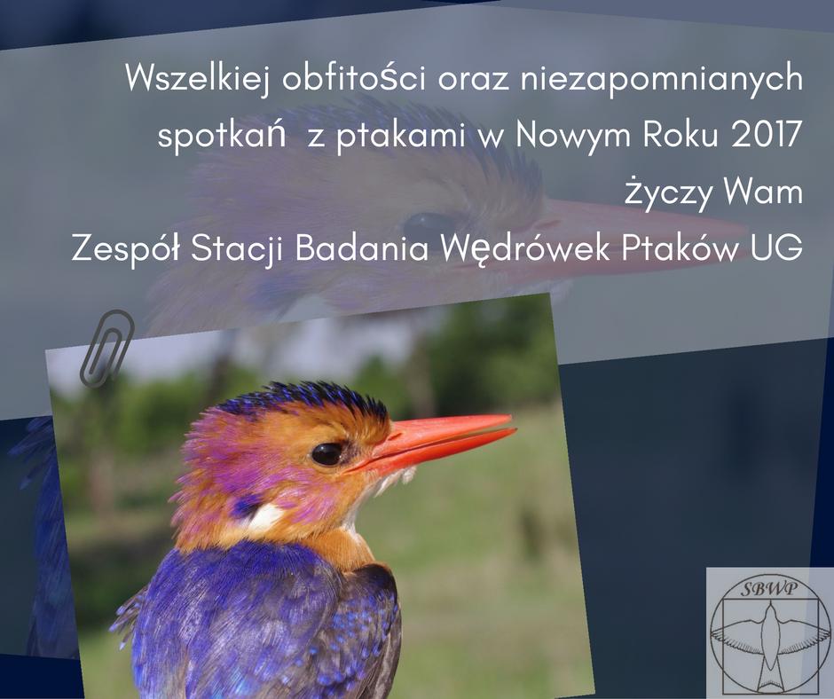 zyczenia-sbwp_2017